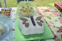PKU Party Butterfly Cake
