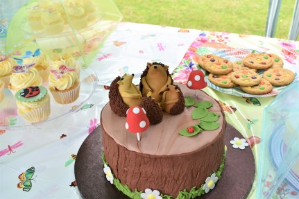 PKU Hedgehog Cake